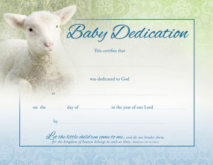 Baby Dedication Certificate  Coated Full Color Warner Press