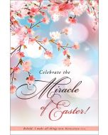 Easter Bulletin - Celebrate the Miracle of Easter!