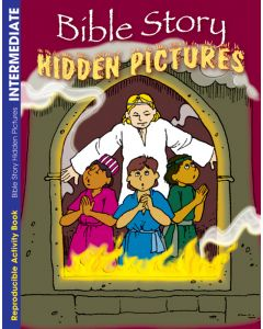 Coloring & Activity Book - Bible Story, Hidden Pictures