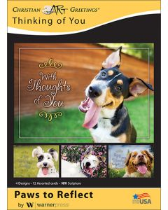 Boxed Greeting Cards - Thinking of You, Paws to Reflect