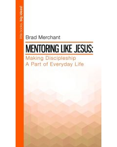 Little books, big ideas - Mentoring Like Jesus