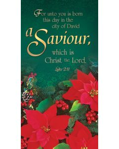 Christmas Offering Envelope / Saviour